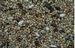 Kleine kaketoe , agapornide, groteparkieten